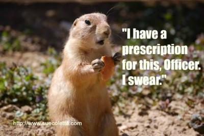 I have a prescription...