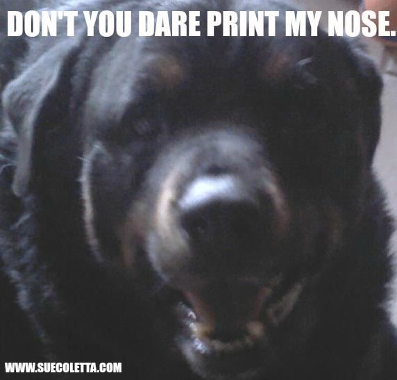 DON'T YOU DARE PRINT MY NOSE