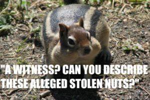 Eyewitness testimony